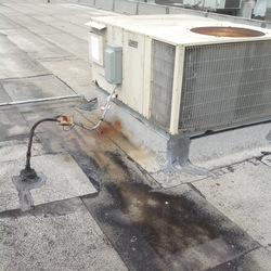 flat roof repair service murrieta california